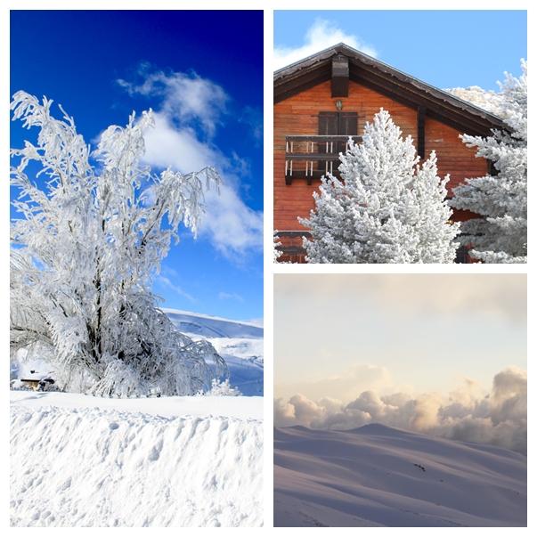 entorno-sierra-nevada